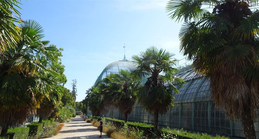The park and greenhouses