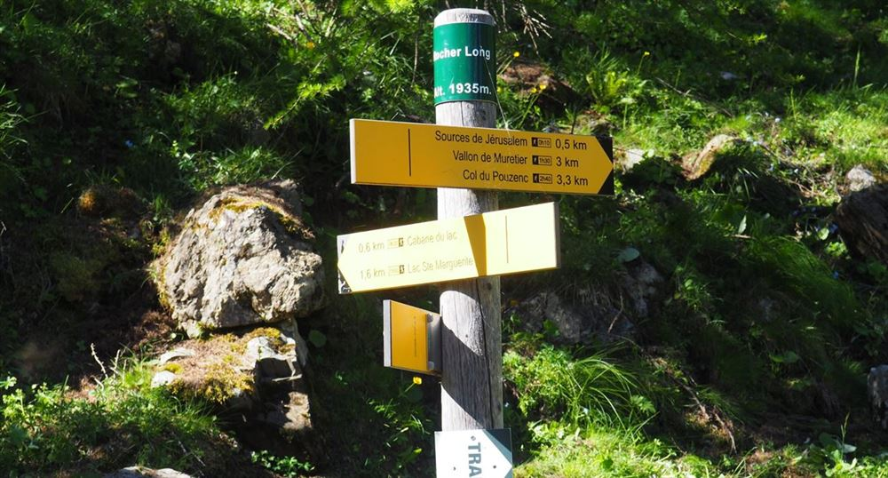 The signposts
