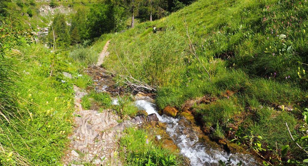 Le chemin vers la cascade