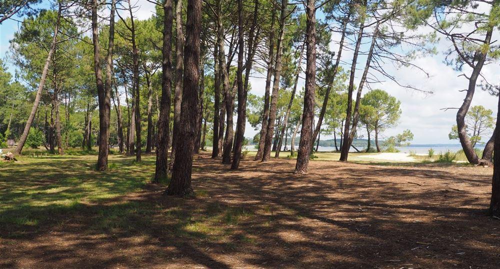 Le lac de Biscarosse