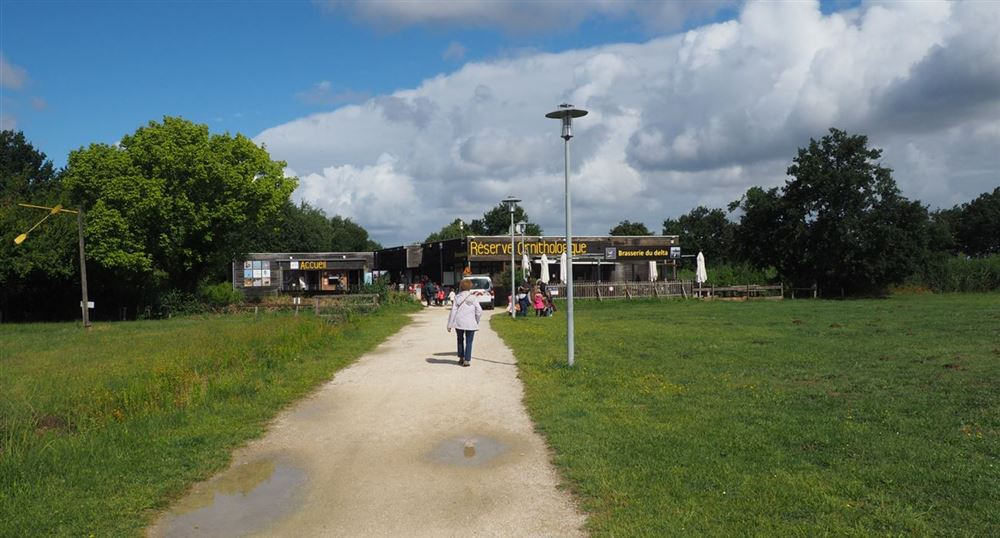 Le départ de la promenade