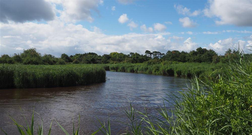 Le delta de l'Eyre