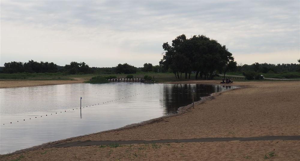 La baignade du Teich